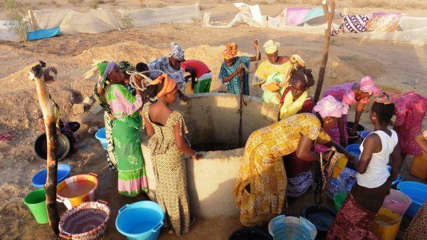 Projet « Maraîchage Féminin » à Doumga Rindiaw